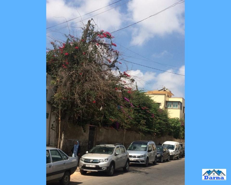 Le terrain a aussi sur la Rue Qadi Hassan a cote de Boulevard Mohamed  VI