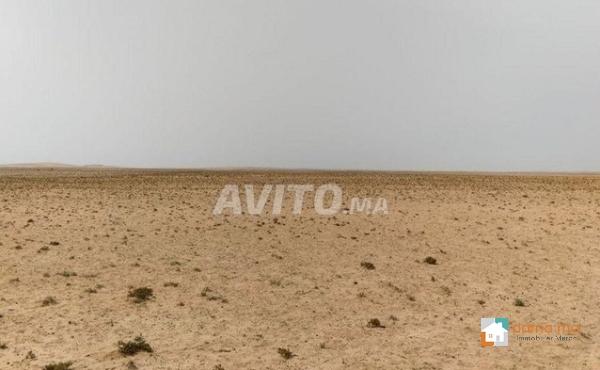 agadir a sidi wasay terrain pour projet titre de 3 HECTAR